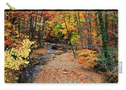 Spectrum Of Color Carry-all Pouch by Frozen in Time Fine Art Photography