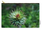 Spiky  Carry-all Pouch