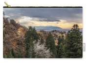 Splendid Views Carry-all Pouch