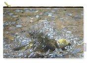 Splish Splash Bird Bath Carry-all Pouch