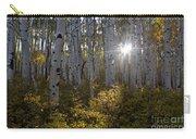 Spot Of Sun Carry-all Pouch by Jeff Kolker