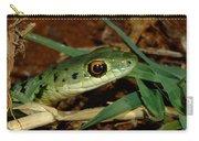 Spotted Bush Snake Philothamnus Semivariegatus Carry-all Pouch