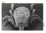 Spotted Fever Tick Carry-all Pouch