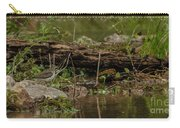 Spotted Sandpiper 2 Carry-all Pouch