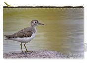 Spotted Sandpiper Pictures 51 Carry-all Pouch