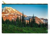 Spray Park Panorama Carry-all Pouch