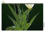 Spring - Backlit White Tulips Carry-all Pouch