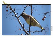 Spring Bird And Berries Carry-all Pouch