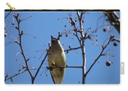Spring Bird Singing Carry-all Pouch