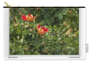 Spring Blooms In Colorado Carry-all Pouch