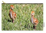 Spring Chicks  Carry-all Pouch