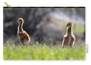 Spring Chicks In The Sunshine Carry-all Pouch
