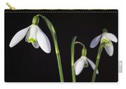 Spring Comes To A Wall Near You Carry-all Pouch