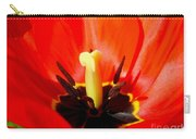 Red Tulip In Spring Carry-all Pouch