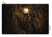 Spring Evening Golden Glow Carry-all Pouch