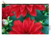 Spring Flowers 5 Carry-all Pouch