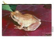 Spring Peeper Carry-all Pouch