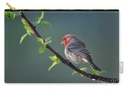Song Bird In Spring Carry-all Pouch