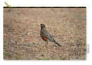 Spring Robin 2014 Carry-all Pouch