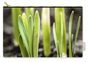 Spring Shoots Carry-all Pouch