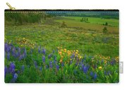 Spring Storm Passing Carry-all Pouch by Mike  Dawson