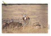Springbok V3 Carry-all Pouch