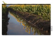 Springs Beautiful Reflection Carry-all Pouch