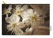 Springtime Blossoms Carry-all Pouch