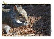 Springtime Nutcracker Carry-all Pouch