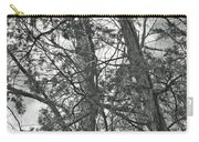 Springtime Woods - New Jesey Pine Barrens - Black And White Carry-all Pouch