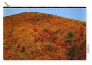 Sproul State Forest Carry-all Pouch