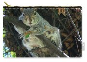 Squirrel By Nest Carry-all Pouch