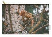 Squirrel In A Tree Carry-all Pouch