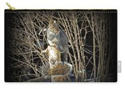 Squirrel On Birch Post Carry-all Pouch