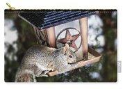 Squirrel On Bird Feeder Carry-all Pouch by Elena Elisseeva