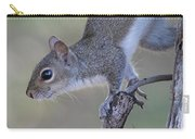 Squirrel Pose Carry-all Pouch