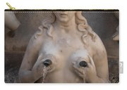 St. Andrew's Fountain Carry-all Pouch