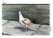 St Augustine Gull Carry-all Pouch