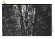 St-denis Woods 2 Carry-all Pouch