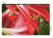 St. Joseph Lilies Carry-all Pouch
