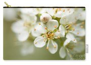 St Lucie Cherry Blossom Carry-all Pouch