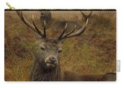 Williams Fine Art Stag Party The Series  Carry-all Pouch