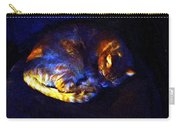 Stained Glass Snoozer Carry-all Pouch