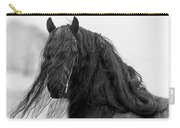 Stallion Beauty Carry-all Pouch