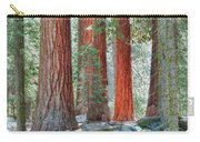 Standing Tall - Sequoia National Park Carry-all Pouch