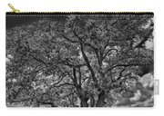 Stardom Bw Carry-all Pouch