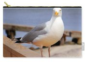 Stare Of A Seagull Carry-all Pouch