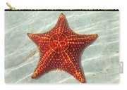 Starfish 3 Of Bottom Harbour Sound Carry-all Pouch