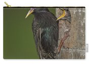 Starling And Young Carry-all Pouch