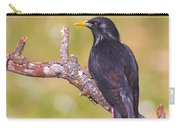 Starlings Carry-all Pouch